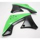 Black/Green Radiator Shrouds - 2141721089