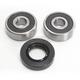 Rear Wheel Bearing Kit - 301-0073