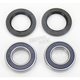 Rear Wheel Bearing Kit - 0215-0119