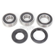 Rear Wheel Bearing and Seal Kit - PWRWS-K11-000
