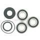 Rear Wheel Bearing Kit - PWRWK-P12-000