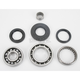 Rear ATV Differential Bearing - A25-2021