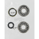 Crank Bearing/Seal Kit - A24-1014
