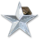 Polished Nautical Star Enrichener Knobs for S&S Carbs - NSCHOKEPOL