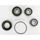 Rear Wheel Bearing Kit - PWRWK-H49-521