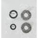 Crank Bearing/Seal Kit - A24-1003