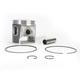 Piston Assembly - 50-305-07PK