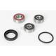 Rear Wheel Bearing Kit - PWRWK-Y28-001