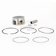 Piston Assembly - 100.5mm Bore - NA-40004-2