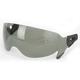 Smoke Anti-Scratch Shield w/Clips - 0130-0420