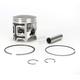 Piston Assembly - 50-520PK