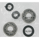 Crank Bearing/Seal Kit - A24-1028