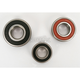 Rear Wheel Bearing Kit - PWRWK-K24-000