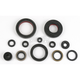 Engine Oil Seal Set - 51-2002