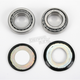 Steering Stem Bearing Kit - PWSSK-H04-420