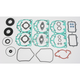 2 Cylinder Engine Complete Gasket Set - 711309