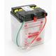 Yumicron High Powered 12-Volt Battery - YB2.5L-C