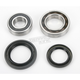 Rear Wheel Bearing Kit - PWRWK-Y23-030