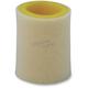 Foam Air Filter - 300-09