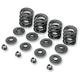 Valve Spring Kit - 20-20440