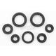 Oil Seal Set - 0935-0017