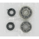 Crank Bearing/Seal Kit - A241007