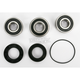 Rear Wheel Bearing and Seal Kit - PWRWSH48000