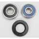 Rear Wheel Bearing and Seal Kit - PWRWS-H32-000