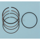 Piston Rings - 79mm Bore - 3110XG