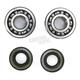 Crank Bearing and Seal Kit - 23.CBS41088