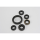 Oil Seal Kit - 0935-0387