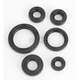 Oil Seal Kit - 0935-0379