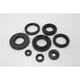 Oil Seal Kit - 0935-0381