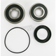 Rear Wheel Bearing Kit - PWRWK-H47-250