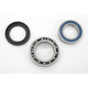 Rear Wheel Bearing Kit - A25-1011