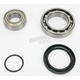 Drive Axle or Jackshaft Bearing and Seal Kit - 14-1041