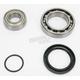 Drive Axle or Jackshaft Bearing and Seal Kit - 14-1041
