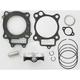 High-Performance Piston Kit - 0910-1647