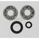 Main Bearing and Seal Kit - K234