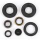 Oil Seal Set - 0935-0055