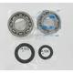 Crank Bearing/Seal Kit - 0924-0001