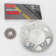 520GXW Chain and Aluminum Sprocket Conversion Kit - 4102-018R