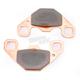 Rear Long Life Sintered R Brake Pads - FA489R