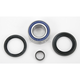 Front Wheel Bearing Kit - A25-1004