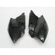 Black Side Panel/Rear Number Plate - 2043370001