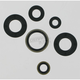 Oil Seal Set - 0934-0164