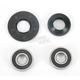Front Wheel Bearing Kit - PWFWK-H18-021