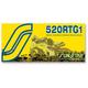 SS520RTG1 Chain