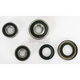 Rear Wheel Bearing Kit - PWRWK-Y62-000