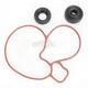 Water Pump Repair Kit - WPK0044